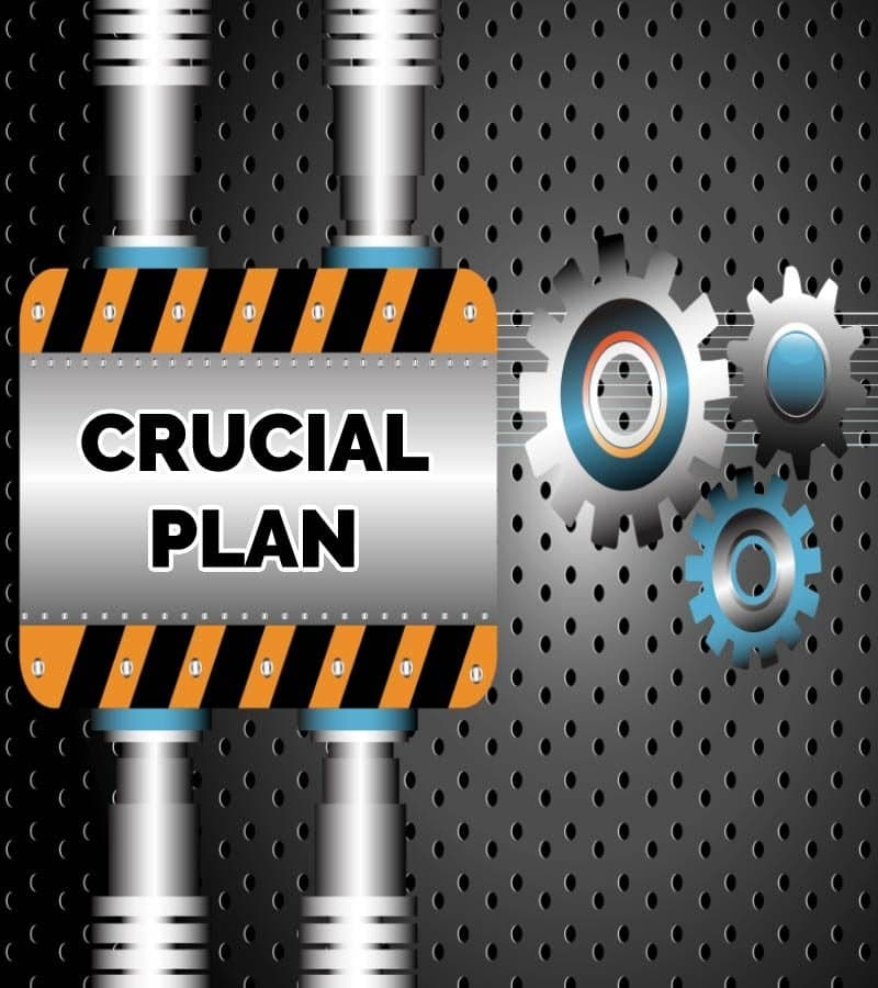 Crucial Client Care Plan